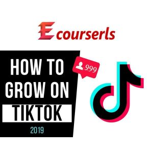 TikTok for Beginners Grow